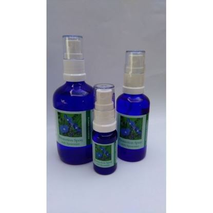 Spearmint Protection Spray bottles