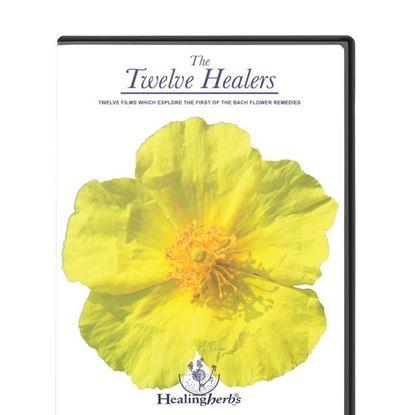 The Twelve Healers DVD