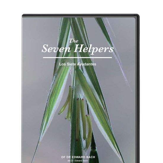 The Seven Helpers DVD